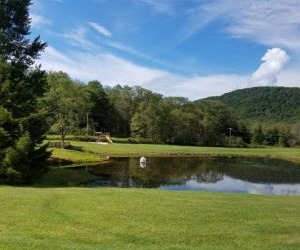 Mallow Lake Drive, Canaan Valley, West Virginia 26260, ,Residential Lot,For Sale,Mallow Lake,1020