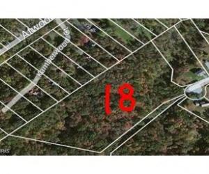 18 Basil, Gerrardstown, West Virginia 25420, ,Residential Lot,For Sale,Basil,1024