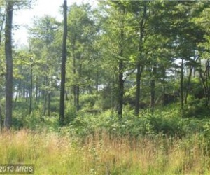 Lower Camp, McHenry, Maryland 21541, ,Residential Lot,For Sale,Lower Camp,1031